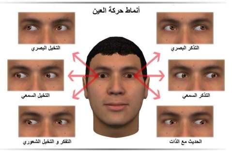 أنماط حركة العين