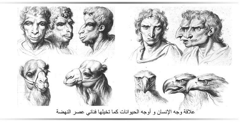 قراءة الوجه - نظرية أرسطو