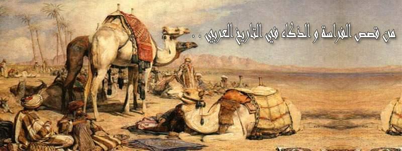 من قصص الفراسة و الذكاء في التاريخ العربي