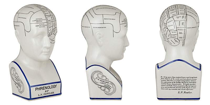 نموذج الرأس الفرينولوجي الحديث